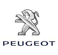Peças automotivas remanufaturadas para Peugeot - IRPA Recuperadora